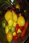 Fall Produce 2